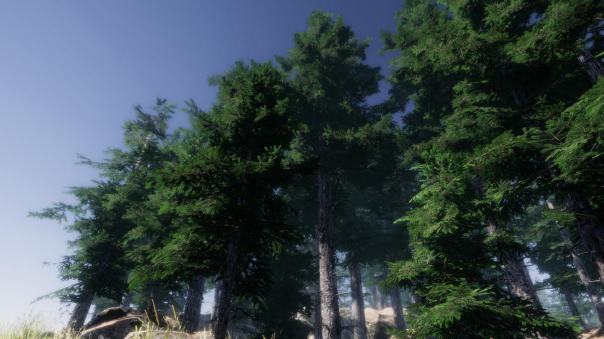 5d7c0bb5 4d78 4e9f b45d 8c81c2adcf52 scaled - Mountain Trees v1.8 - unity植物树木模型