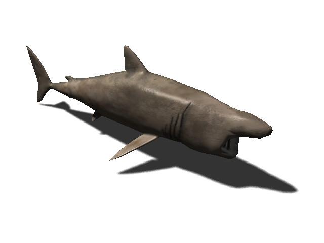 b02f4b0d 0832 49f4 a1a5 b1fa8a80d000 scaled - 13种Unity3D海洋动物动画绑定包Rigged Sea Animals v2.0