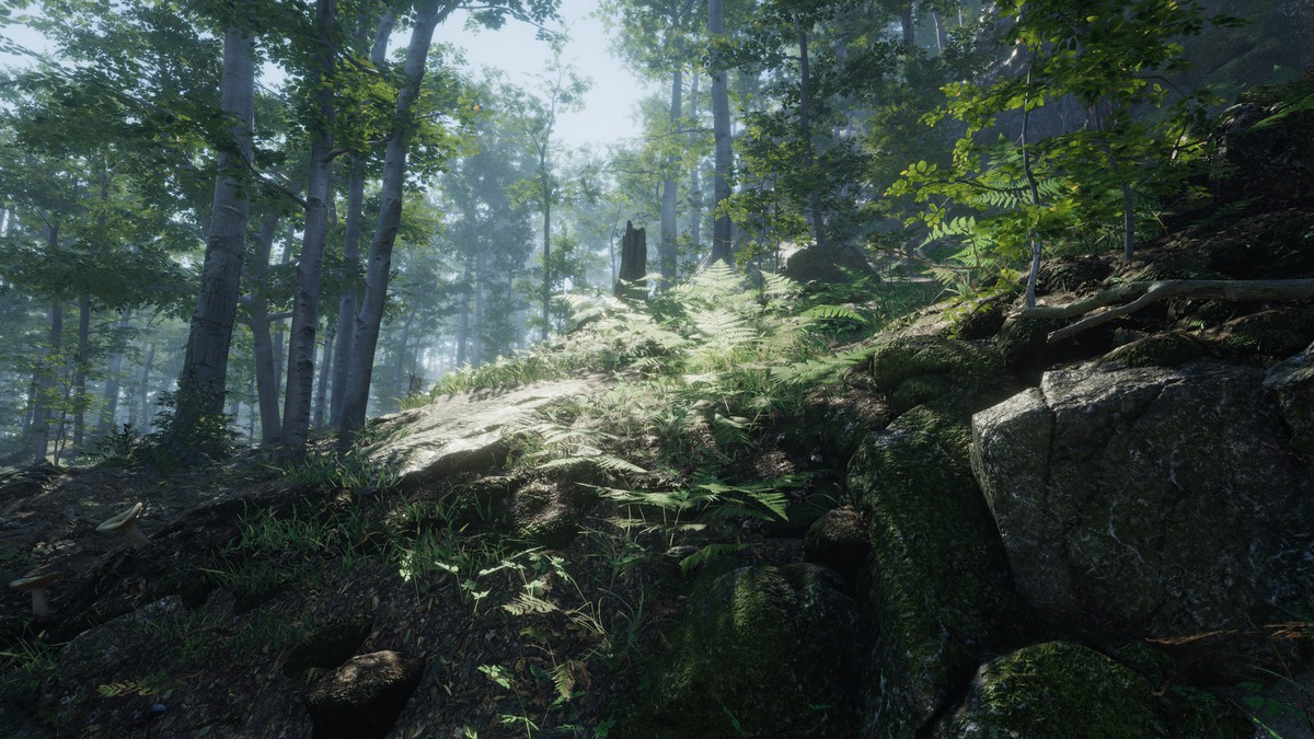 b81b0e31 7de2 40db a806 796f37e6fb16 scaled - Unity3D森林环境植物资源包Forest Environment Dynamic Nature 1.3